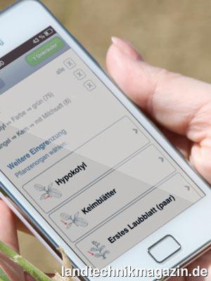 bild 1 die neue app liz unkraut bestimmung f r ios und android smartphones erm glicht eine. Black Bedroom Furniture Sets. Home Design Ideas