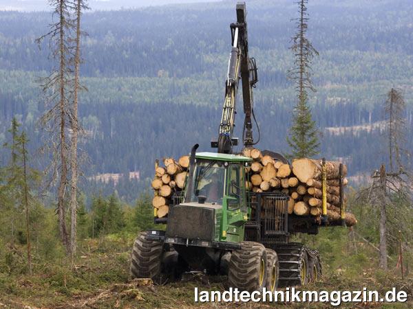 russische Holzindustrie Russland Wirtschaft